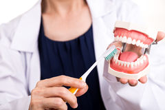 Series of dentist showing correct method of brushing teeth Royalty Free Stock Images