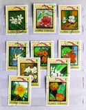 Series Flora and Fauna - Flowers, circa 1983. MOSCOW, RUSSIA - FEBRUARY 19, 2017: A post stamps in album  printed in Cuba shows Series Flora and Fauna - Flowers Stock Images