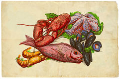 From the series food: Seafood. An hand drawn illustration on old paper. From the series Food around the World: Fishes, Octopus and Lobster Royalty Free Stock Image