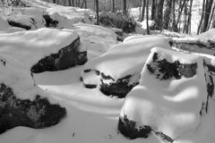 Large snow covered rocks. A series of large rocks on the forest floor covered with snow in winter Stock Photo
