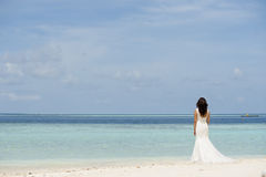Series of Maldives Royalty Free Stock Image
