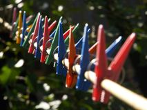 Free Series Of Clothes-pegs Stock Photos - 770913