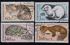 A series of old postage stamps of Czechoslovakia. Mammal animals of Europe. Royalty Free Stock Photo