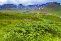National Parks of Alaska Stock Photo