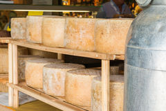 Series of round forms of aged cheese in the local market Royalty Free Stock Images