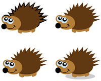 Series of several hedgehogs Royalty Free Stock Photos