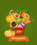 Series - vector fruit, vegetables and spices. Farm market. Natural products Royalty Free Stock Image