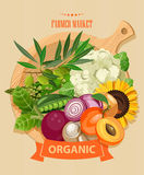 Series - vector fruit, vegetables and spices. Farm market. Set of vegetables, fruits and spices. Sketch Stock Photo