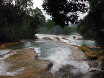 Series of Waterfalls at Agua Azul, Mexico Royalty Free Stock Photography
