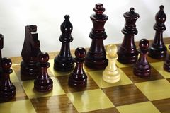 Series - World chess. Traitor. The concept of the game of chess as a real life Stock Photo
