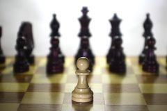 Series - World chess. The unequal confrontation. Stock Image