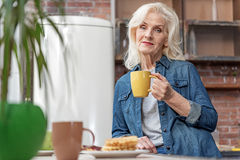 Serine old lady drinking tea at home Stock Image