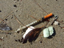 Seringa lavada acima na costa do Sandy Beach Foto de Stock