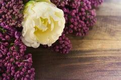 Seringen en tulpen Stock Fotografie