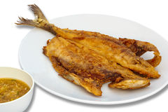 Seriola fried fish with spicy sauce Royalty Free Stock Images