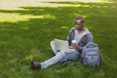 Serious african-american student using laptop in the park Stock Image