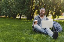 Serious african-american student using laptop in the park Stock Photography
