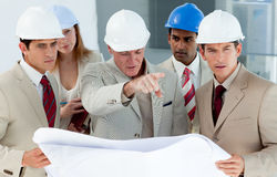 Serious architect looking at blueprints Royalty Free Stock Photos