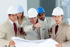 Serious architect looking at blueprints Stock Image