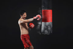 Serious asian male boxer training with punching the punching bag Royalty Free Stock Photo