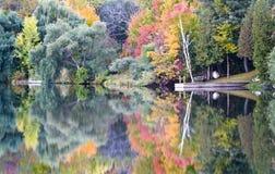 Serious Autumn Stock Image