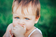 Serious baby eating apple. closeup portrait. An infant baby girl eating an apple in the hands Stock Image