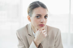 Serious beautiful businesswoman looking at camera Stock Image
