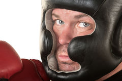 Serious Boxer Close Up Royalty Free Stock Image