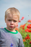 Serious boy in field with red poppies Stock Images