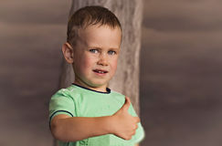 Serious boy. Stock Image