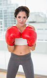 Serious brunette boxing and looking at camera Stock Photos