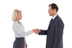 Serious business people shaking hands Royalty Free Stock Image
