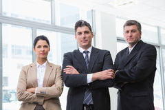 Serious business team standing with arms crossed Stock Image