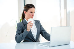 Serious business woman typing on her laptop. Serious business woman,at her desk, typing on her laptop and drinking coffee Royalty Free Stock Image