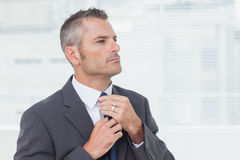 Serious businessman tightening up his tie. In bright office Royalty Free Stock Photography