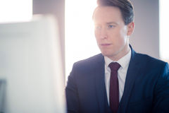 Serious businessman typing on computer. In his office Stock Image