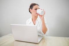 Serious businesswoman working on laptop drinking coffee Stock Image