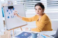Serious busy woman working with diagrams and looking tired. Important diagrams. Clever attentive busy woman sitting in her comfortable office and looking tired Royalty Free Stock Photo
