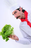 Serious Chef. Serious looks Chef holding lettuce vegetable Stock Image