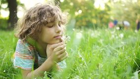 A serious child lies on a summer meadow with a flower in his hand. A curly-haired boy blowing on a dandelion. Children. Day. Happy summer vacation stock footage