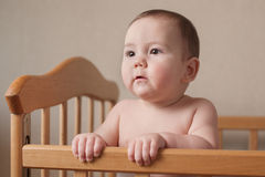 Serious chubby young baby with a focused look Royalty Free Stock Images