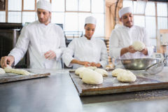 Serious colleagues kneading uncooked dough Royalty Free Stock Image