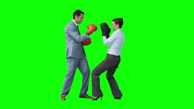 Serious colleagues in slow motion boxing stock footage