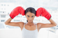 Serious competitive model wearing red boxing gloves Royalty Free Stock Photography