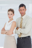 Serious coworkers posing together Royalty Free Stock Image