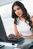 Serious cute businesswoman sitting behind desk at computer Stock Photography