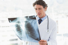 Serious doctor looking at X-ray Royalty Free Stock Images