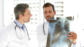 Serious doctors looking at xray. At the hospital stock footage