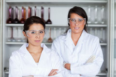 Serious female scientists posing Stock Image