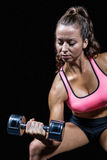 Serious fit woman lifting dumbbell Stock Photos